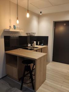 Kuchnia lub aneks kuchenny w obiekcie H33 Apartamenty