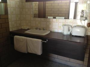 A bathroom at Rippleside Park Motor Inn