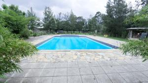 The swimming pool at or near Pilgrims getaway