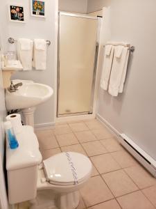 Salle de bains dans l'établissement Gîte Le Grandelinois