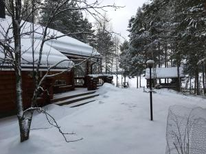 Nenäniemi during the winter
