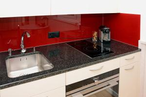 Küche/Küchenzeile in der Unterkunft Studio 25 Davos Platz