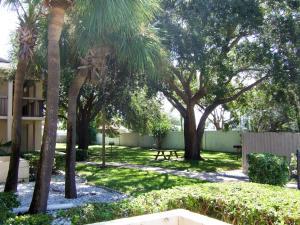 A garden outside Club Orlando