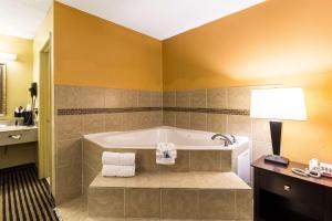 A bathroom at Rodeway Inn Alexandria