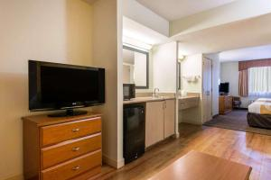 A television and/or entertainment centre at Quality Inn & Suites Near the Theme Parks