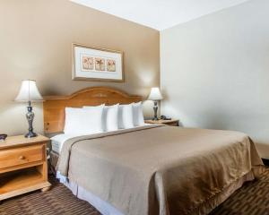 A bed or beds in a room at Quality Inn South Springfield