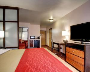 A television and/or entertainment center at Comfort Inn Jackson