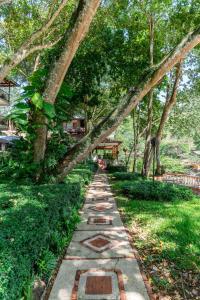 A garden outside Hotel Gran Jimenoa