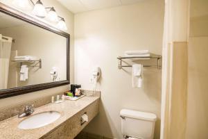 A bathroom at Quality Inn Alexander City