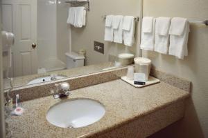 Ein Badezimmer in der Unterkunft Quality Inn Yosemite Valley Gateway