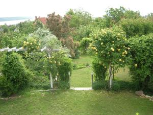A garden outside Csalintos Apartman