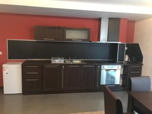 A kitchen or kitchenette at Pamporovo Central Apartments