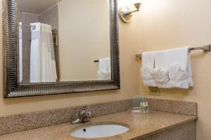 A bathroom at Holiday Inn Aurora North - Naperville