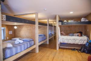 A bunk bed or bunk beds in a room at PodShare Venice