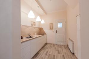 A kitchen or kitchenette at Marine Sopot - SG Apartamenty