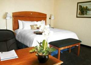 A bed or beds in a room at Hampton Inn Dallas-Rockwall