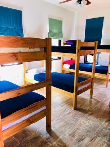 Una cama o camas cuchetas en una habitación  de La Deseada Hostel