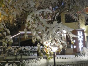 Hotel Villa Boyana during the winter
