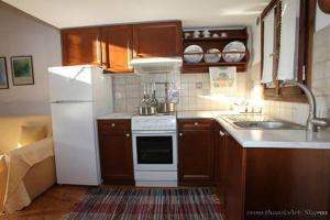 Η κουζίνα ή μικρή κουζίνα στο Traditional studio