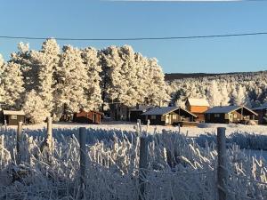 Roste Hyttetun og Camping om vinteren