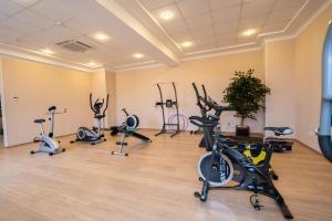Фитнес-центр и/или тренажеры в Бизнес-Отель «Маск»