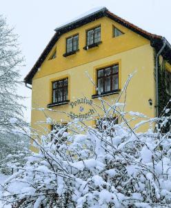 Penzion Adršpach Báry Brabcové v zimě