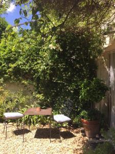 A garden outside Mas des Teinturiers
