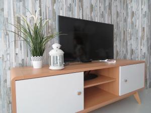 Una televisión o centro de entretenimiento en Alcañiz Flats I