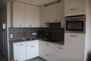 Cuisine ou kitchenette dans l'établissement Residentie Koksijde promenade