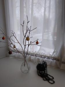 Апартаменты на Франциска Скорины 26 зимой