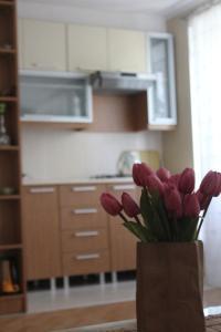 A cozinha ou cozinha compacta de VIP Molocan Garden - Old city, Founatain square, Nizami street area apartment