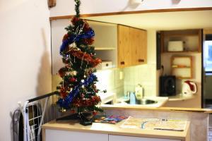 Küche/Küchenzeile in der Unterkunft Apartments House Seifertova