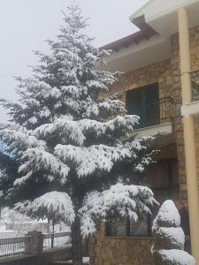 Το Ξενοδοχείο Krystal τον χειμώνα
