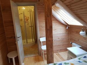 Vannas istaba naktsmītnē Guest House Ziedkalni