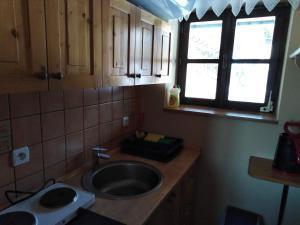 Kuchyň nebo kuchyňský kout v ubytování U Černých