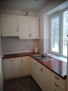 Кухня или мини-кухня в Гостиничный Комплекс Бабаево