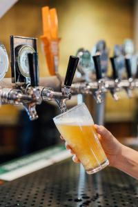 Drinks at Shortland Budget Accommodation