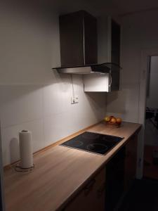Kuchyň nebo kuchyňský kout v ubytování David