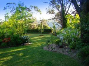 A garden outside Black Cockatoo Retreat
