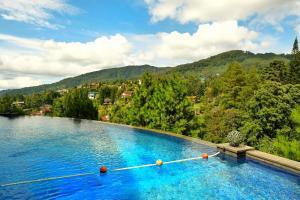 المسبح في فندق منتجع غراند هيل أو بالجوار