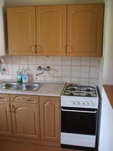 A kitchen or kitchenette at Fazekas Vendégház és Kemping