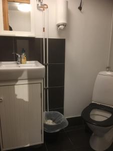 Kylpyhuone majoituspaikassa Vånga Hostel