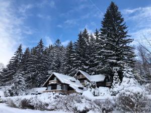 Chata Jezevec v zimě