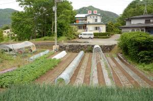 丸弥荘にある庭