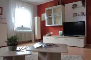 TV/Unterhaltungsangebot in der Unterkunft Haus Kolmesfeld