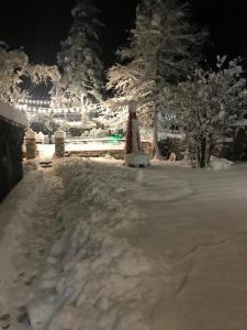 Garden Hotel Pasanauri during the winter