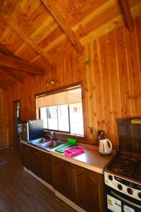 A kitchen or kitchenette at Cabaña molcosur