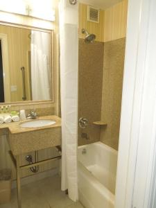 A bathroom at Holiday Inn Express LaGuardia Airport