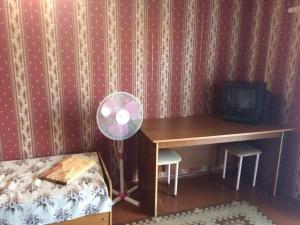 Телевизор и/или развлекательный центр в Guest house Esenia