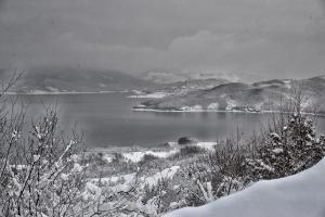 Anthemion durante l'inverno